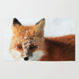 Snowy Faced Cheeky Fox with Tongue Out Rug