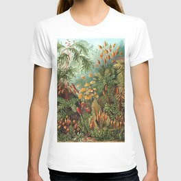 Ernst Haeckel Muscinae Microscopic Landscape T-shirt