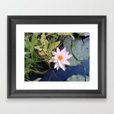 LOTUS Framed Art Print