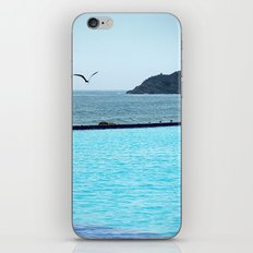 Swimming Pool Gull iPhone & iPod Skin