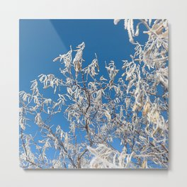 Watercolor Ice 21, Blue Russian Olive Hoarfrost Metal Print