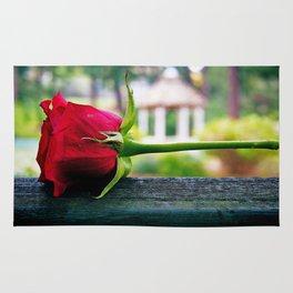 Last rose Rug