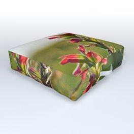 Oklahoma Wildflower Outdoor Floor Cushion
