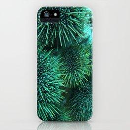 Kina iPhone Case