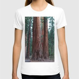 The Word For World Is Forest T-shirt