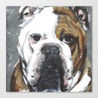 english bulldog Canvas Prints featuring English Bulldog  by ali_grace_gal