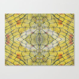 Cell Structure  Canvas Print