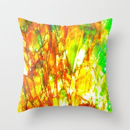 Sunset Ammolite Throw Pillow