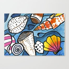 Lots of Lovely Shells  Canvas Print