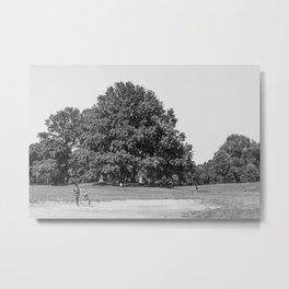 Prospect Park Metal Print