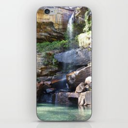 Blackdown Tableland Oasis iPhone Skin