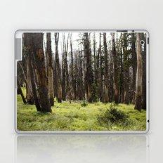 YELLOWSTONE FOREST Laptop & iPad Skin