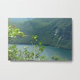 Above Willoughby Lake Metal Print