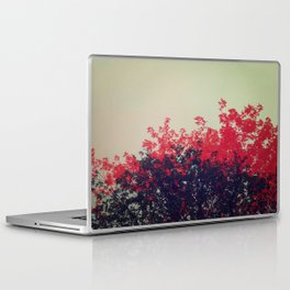 - 034. Laptop & iPad Skin