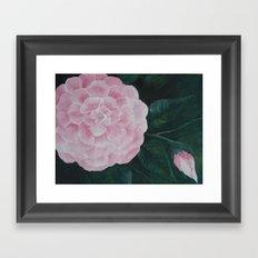 Pink Camelia Framed Art Print