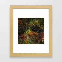 Roadside Color, Tennessee Framed Art Print