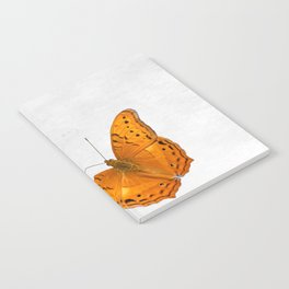 Butterfly and ghost on textured white Notebook
