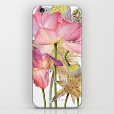 Sacred Lotus Botanical iPhone & iPod Skin