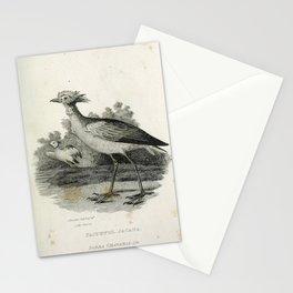 010 Faithful Jacana parra chavaria Stationery Cards