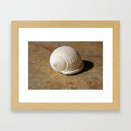 Niecey's Scottish Bonnet Framed Art Print