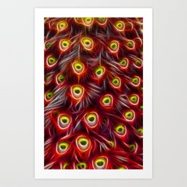 Peacock Feathers in Red Art Print