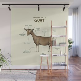Anatomy of a Goat Wall Mural