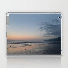 Zuma Laptop & iPad Skin