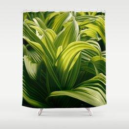 Green Goodness by Mandy Ramsey, Haines, Alaska Shower Curtain