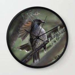 Little wattlebird - Anthochaera chrysoptera Wall Clock