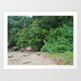 Borneo Bako National Park Art Print