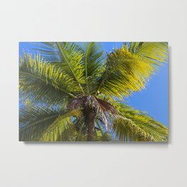 Caribbean Breeze Metal Print