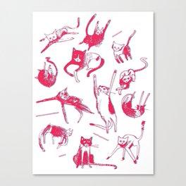 Falling Cats Canvas Print