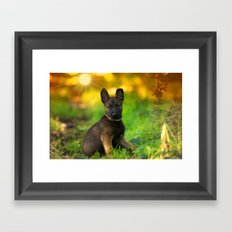 Wonderful autumn forest with curious dog puppies Framed Art Print