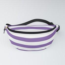 Horizontal Purple Stripes Fanny Pack