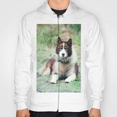 Greenland Dog Hoody