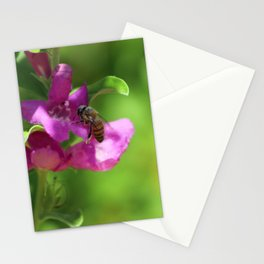Bee on Royal Purple Texas Ranger Flower Stationery Cards