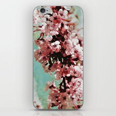 Springblossom - photography iPhone & iPod Skin