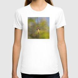 """The little queen dragonfly """"Libellula depressa"""" T-shirt"""