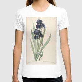 iris germanica Redoute Roses 2 T-shirt