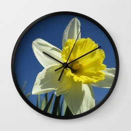 Daffodil Out of the Blue Wall Clock
