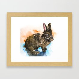 bunny#12 Framed Art Print