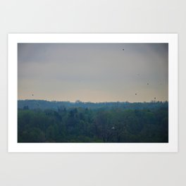 Birds in the sky Art Print