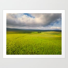 Ireland - Conoration Plantation in Wicklow Mountains by drone (RR367) Art Print