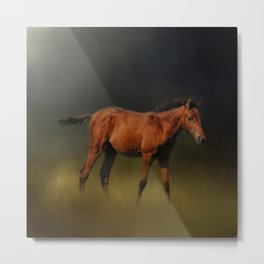 Copper Colt In The Moonlight Metal Print
