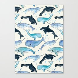 Whales, Orcas & Narwhals Canvas Print