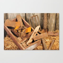 Rusted tools Canvas Print