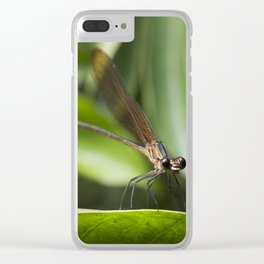 Baby Dragonfly - Insects Photography Clear iPhone Case