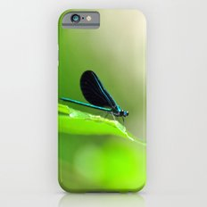 Blue Damsel and the Lime Green Sky iPhone 6s Slim Case