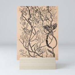 Naturalist Seaweed Mini Art Print
