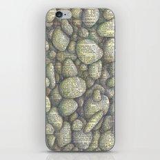 Stony River Bottom iPhone & iPod Skin